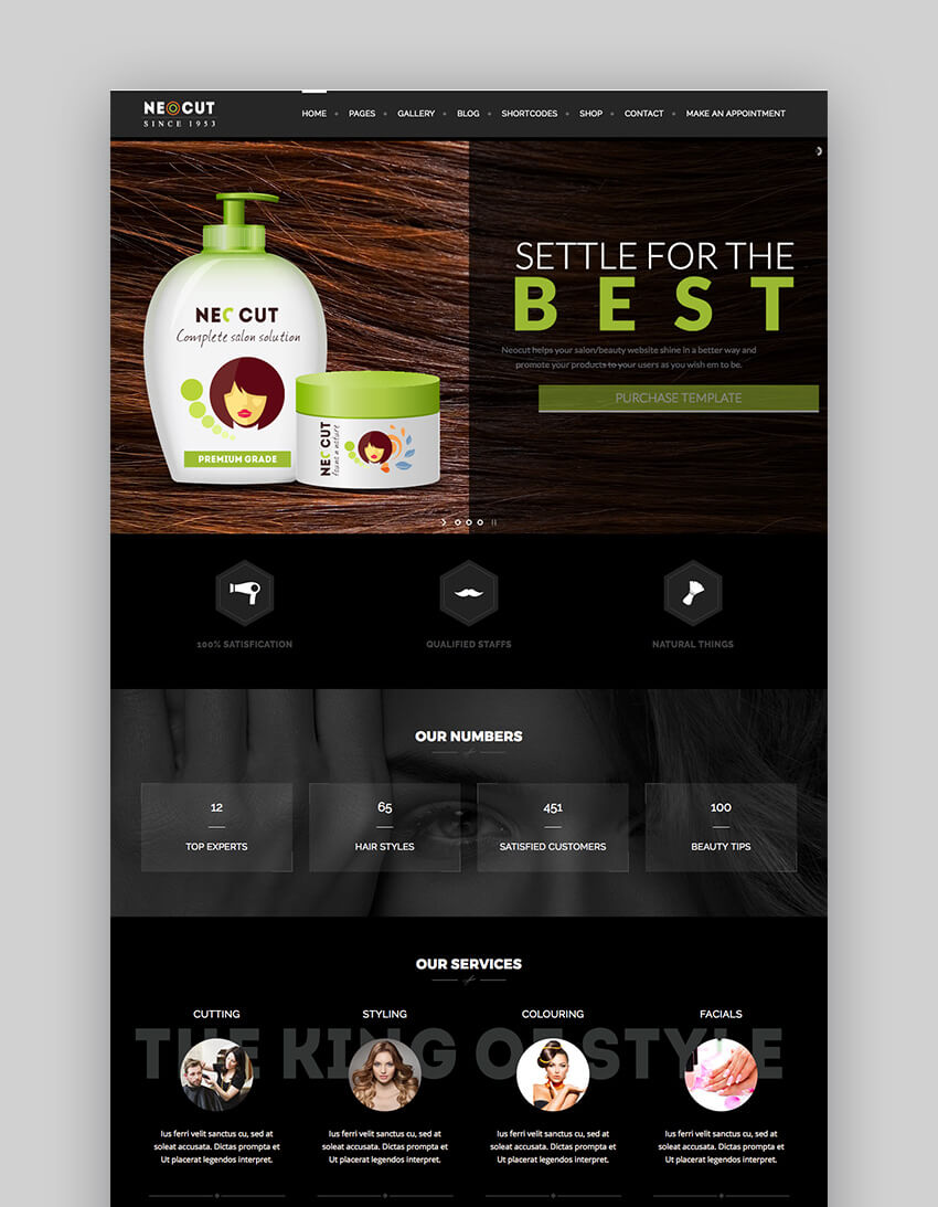 Neo Salon Trendy Website Salon WordPress Theme