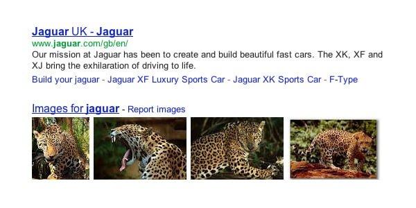 jaguar |
